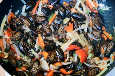 cockroaches with vegetables