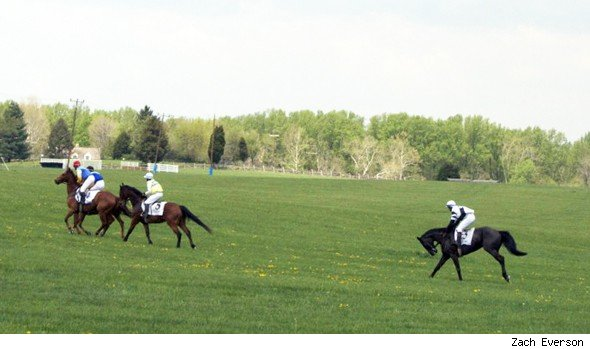 American Horse Trail Road Trip: Northern Virginia, steeplechase races