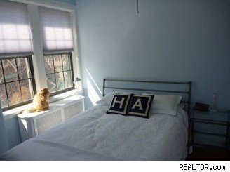home staging pets