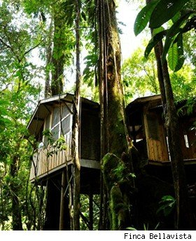 Bellavista Treehouse