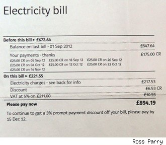 Pavilion Gardens electric bill