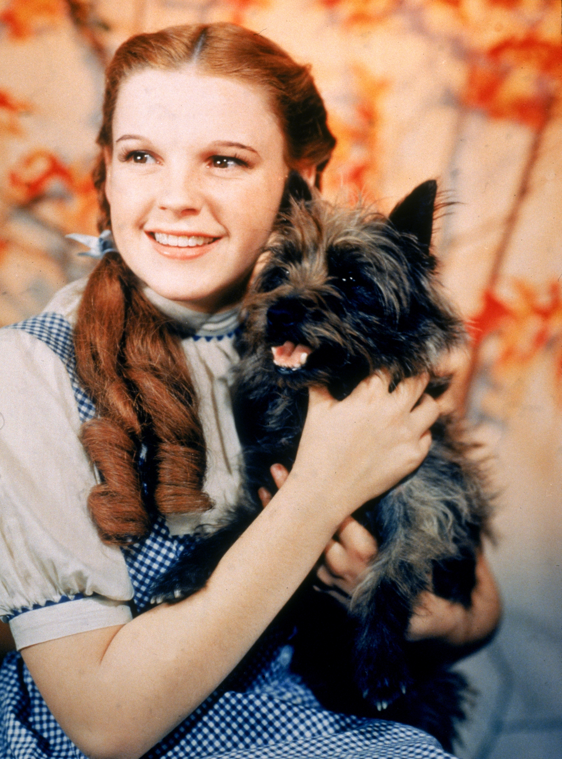 Prototype 'Wizard of Oz' Dorothy dress is up for auction - AOL ...