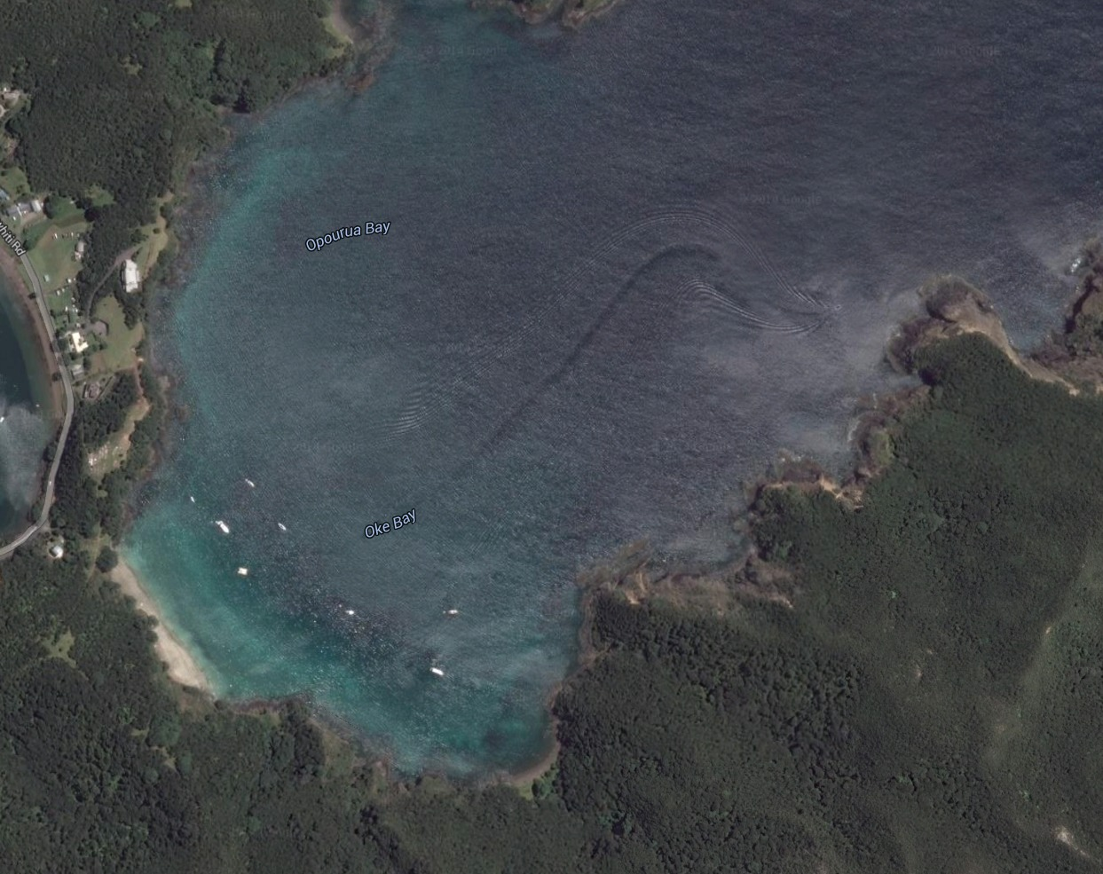 Mysterious creature spotted in Google Earth image - AOL News