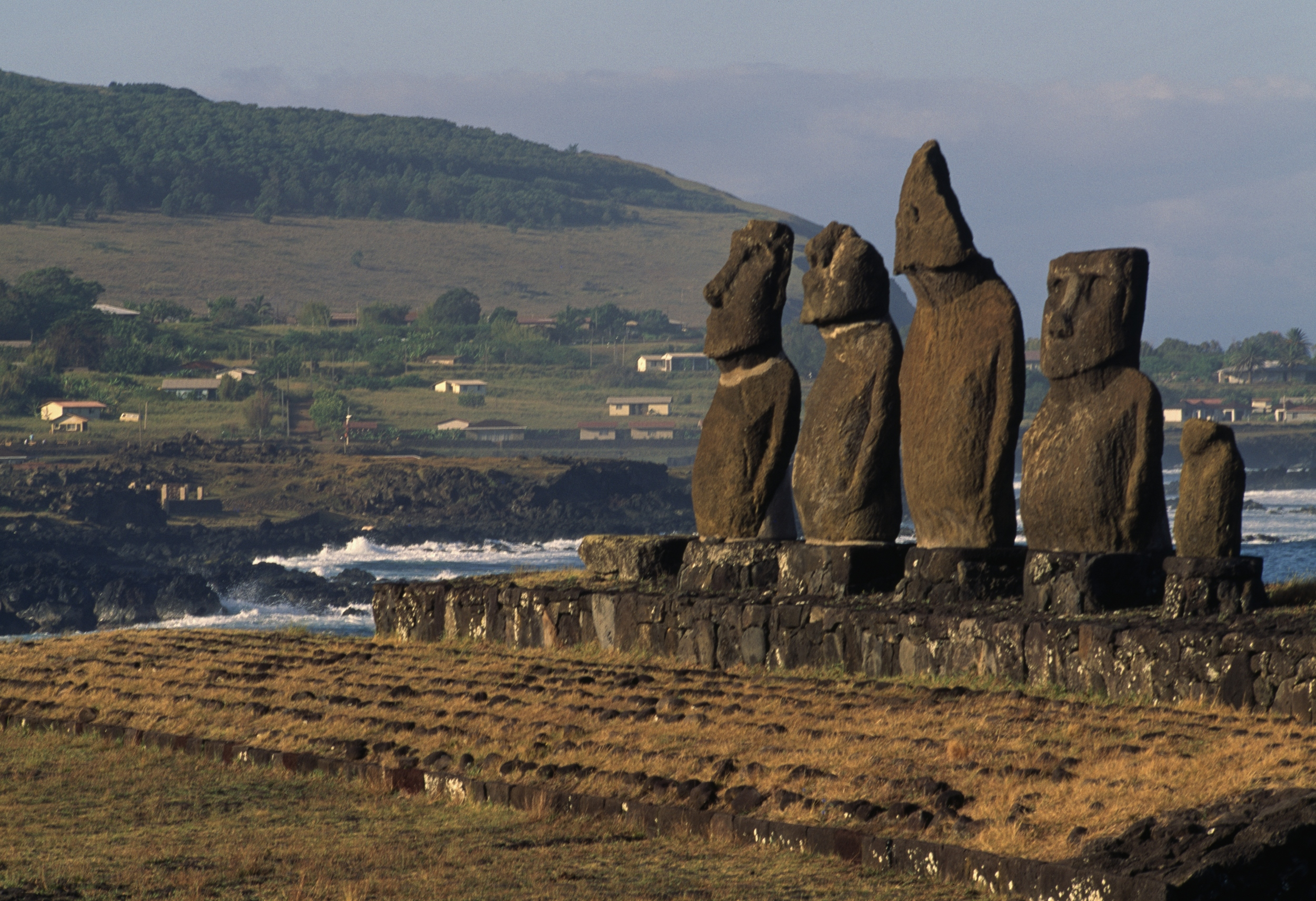 Could Easter Island hold the key to anti-aging?