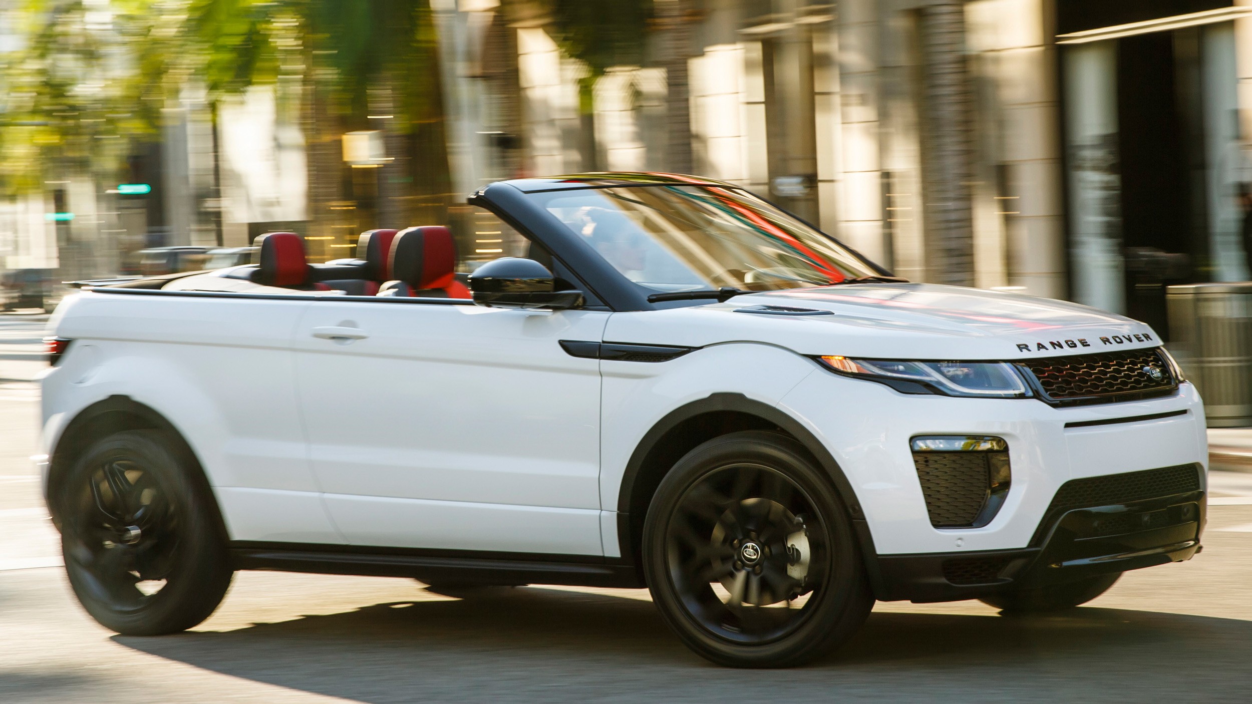 ... Kind Of Dog Is In The Range Rover Evoque Commercial - Breed of Dog
