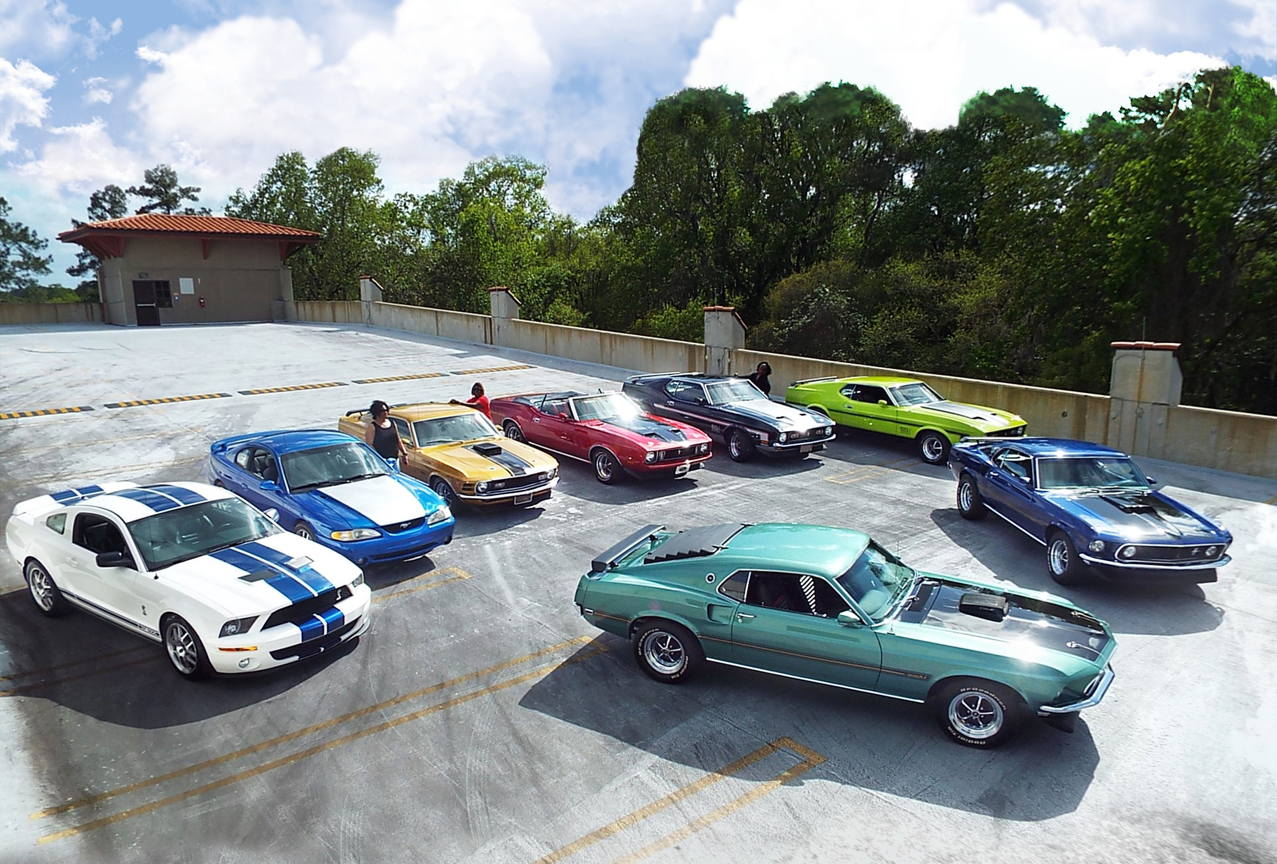 speed family ford mustang collection