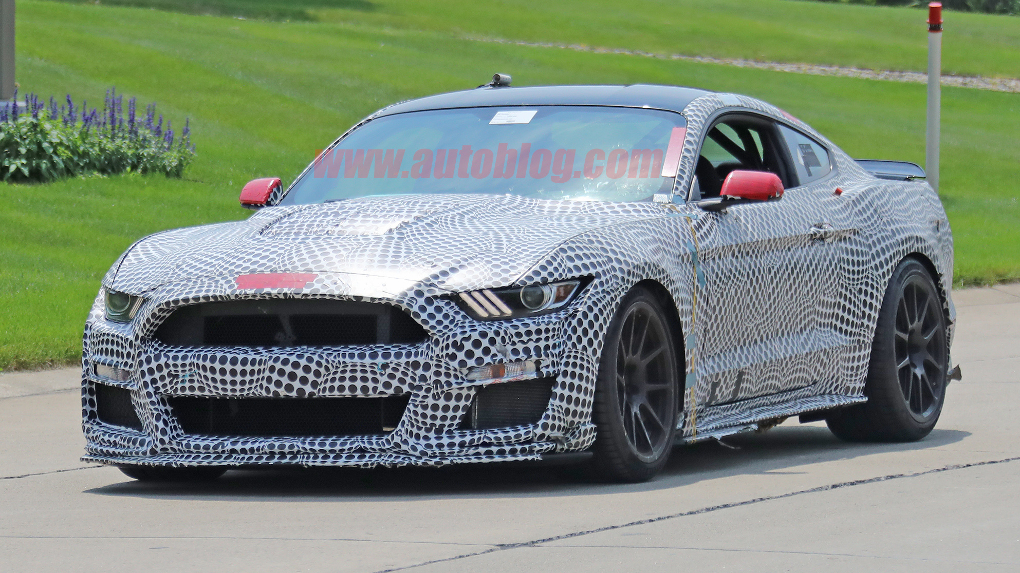 2019 Ford Mustang Shelby GT500 sprouts a spoiler, roll ...