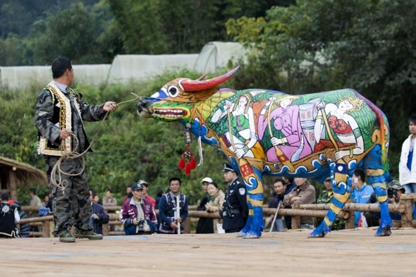 Cow did you do that? Bull painting festival shows off animal art