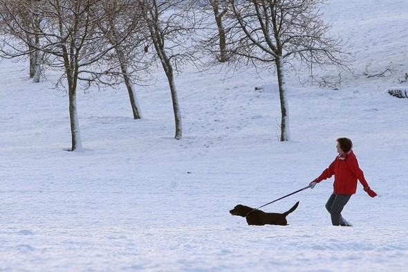 Time to book a holiday alert! Britain to be hit by Arctic storms and 90mph wind