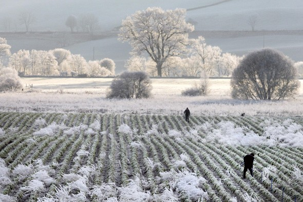 Snow in UK but it's still the warmest January on record so far