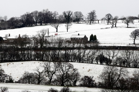 Spring hasn't sprung yet: Cold snap biting back
