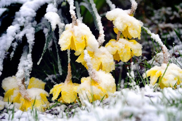 Britain to be colder than Christmas as big chill arrives, britain icy weather, april weather forecast