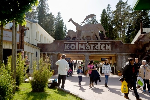 Pack of wolves maul zoo worker to death in Sweden