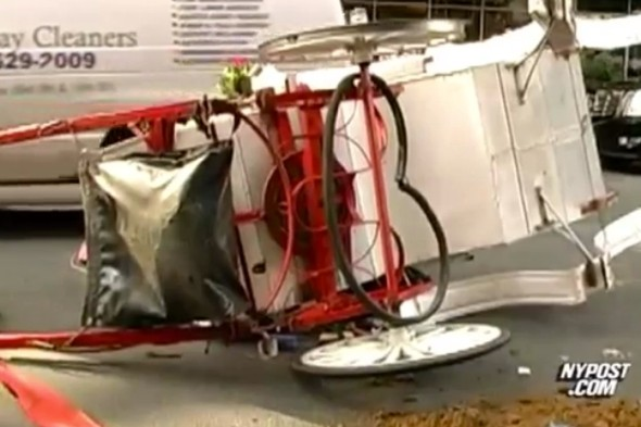 Two tourists injured as carriage horse breaks free in New York