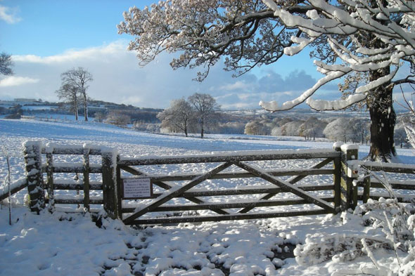 Winter wonderlands for days out in the country