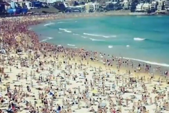 Video Thousands Of Swimmers Flee Sea At Bondi Beach After New Years Day Shark Scare