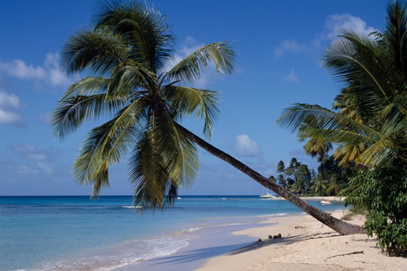 3,000 Britons financially ruined by Caribbean property scheme