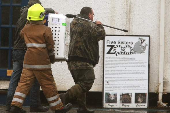 Reptiles, otters and insects die in Scottish zoo fire