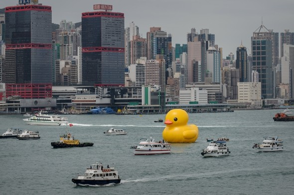 Peking duck! Giant inflatable art installation sails into Victoria Harbour in Hong Kong