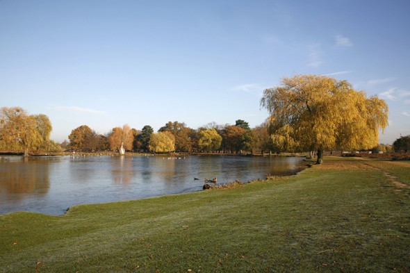 Sunbather sexually assaulted in London park