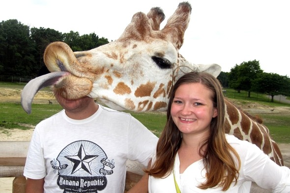 Best photo bomb ever? Giraffe ruins couple's pic at Six Flags theme park