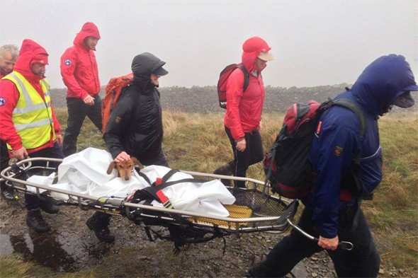 Badly injured dog rescued after MONTH lost in Yorkshire Dales