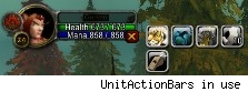 UnitActionBars in use