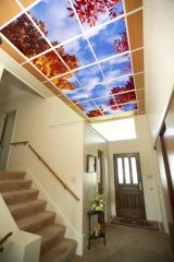 fake skylight