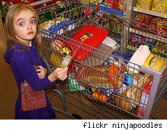 kid and a grocery cart
