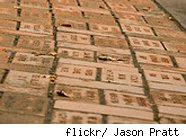 Donor bricks