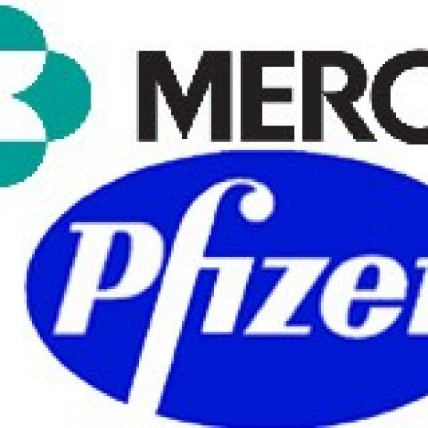 financial analysis of merck and pfizer Figure 16: merck swot analysis snapshot pfizer and eli lilly had better financial condition and efficiency ratio in terms of investment ratios.