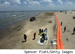 Workers cleaning up BP oil washing ashore.