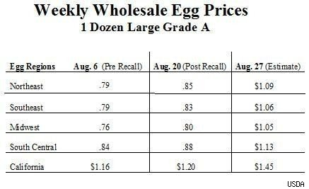 wholesale egg prices