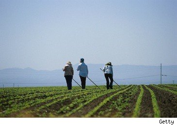 farm workers - walmart supports local-produce