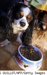 dog food ratings good guide