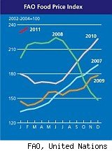 chart shows world food prices skyrocketing