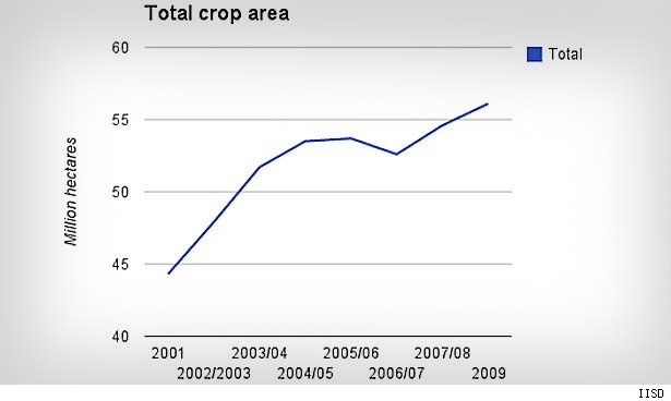 Mato Grosso farmers have been major beneficiaries of Brazil's explosive growth in arable land — up 26 percent between 2001 and 2009.