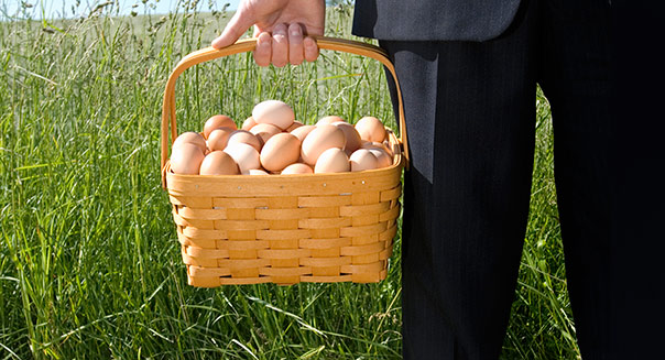 Having all your eggs in one basket