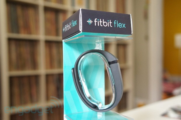 DNP FitBit Flex Review