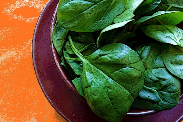 Is salad more appealing in your 20s than your 30s?