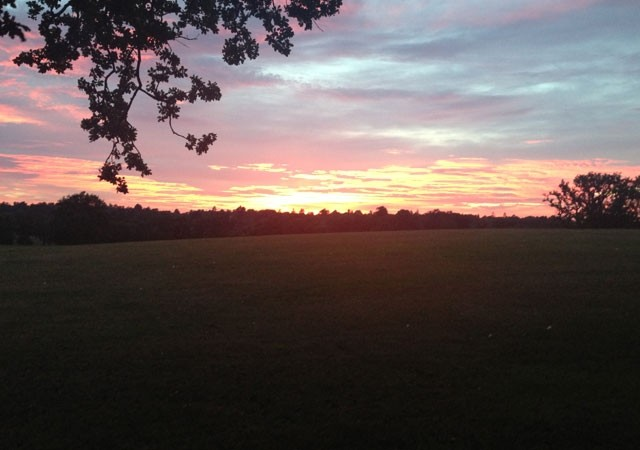 coworth-park-sunset
