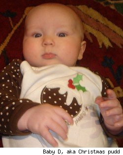 The Newborn Diaries: Baby's First Christmas