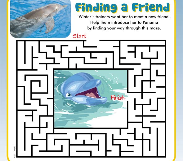 dolphin tale printable coloring pages - photo#30