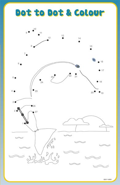 dolphin tale printable coloring pages - photo#1