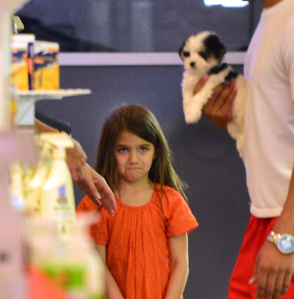 Suri Cruise falls in puppy love - but leaves pet shop broken-hearted