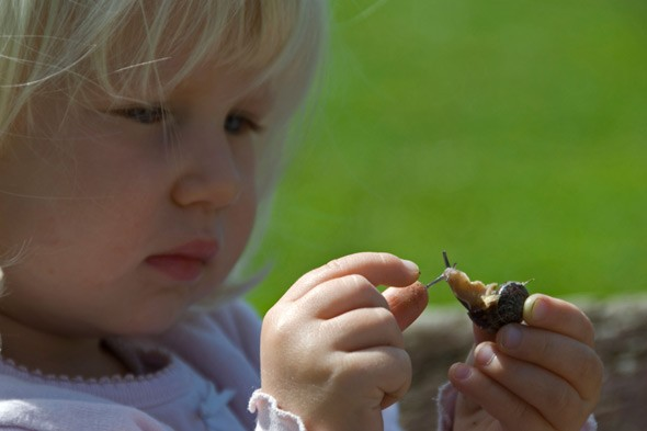 Toddler with a snail