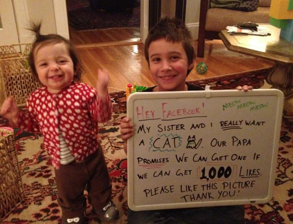 Cute kids use power of Facebook to persuade reluctant dad to get them a cat