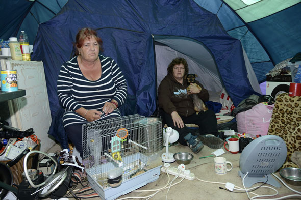 Family of six living in tent because they won't give up their pets