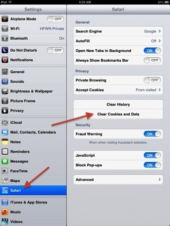 iPad 101: Clearing individual website cookies